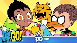 Teen Titans Go! | Animals Alive | DC Kids