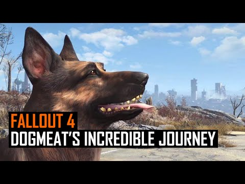 Fallout 4: Dogmeat's Incredible Journey Home