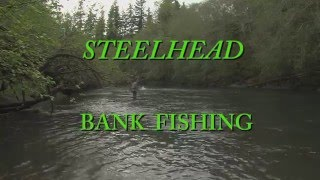 STEELHEAD BANK FISHING Trailer