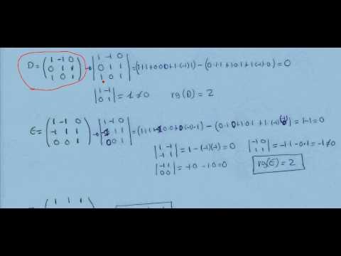 Rango de matrices por determinantes 1