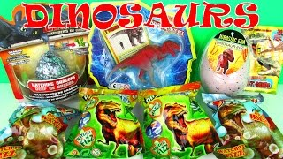 DINOSAURS Jurassic World Dinosaur Surprise Eggs Toy Review TV Surpise Egg Video