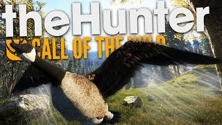 The Hunter Call Of The Wild | CATCHING UP!!