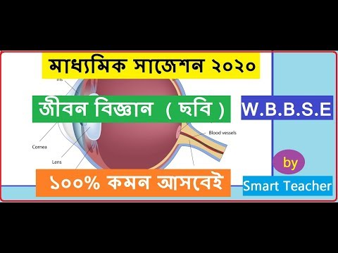 WB MADHYAMIK LIFE SCIENCE SUGGESTION 2020 by Smart Teacher