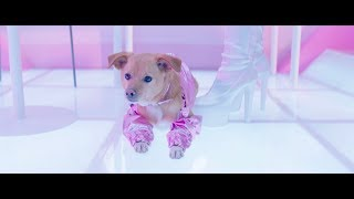 Ariana Grande -  thank u, next (the fragrance)