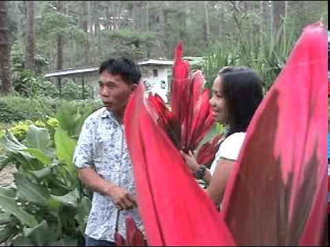 daytoy kantak (igorot song)