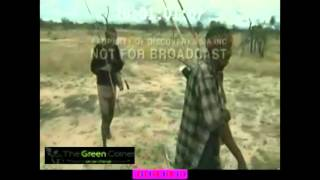 Download The Great Human Odyssey - Discovery Bangla Documentary (A short clip) 3Gp Mp4