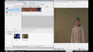 Sony Vegas, Photoshop, and After Effects Tutorials