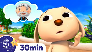 Animal Rescue Song! Stem Learning Videos +More Nursery Rhymes - ABCs and 123s | Little Baby Bum