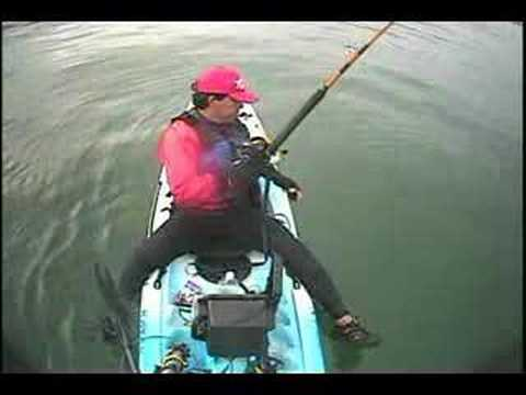 3 Thresher SHARKS TOTAL 240lbs caught on kayak by jceviche
