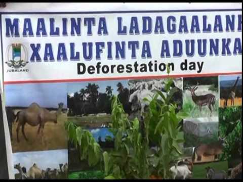 Somali News Tv & Adam Jama