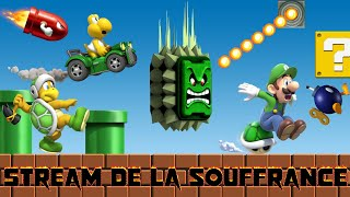 VOD Super Mario Maker 2 + Mario Kart 8 (18/07/2019) 2/2
