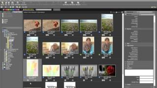 Download Lagu Tutorial on Nikon D750 RAW Editing and Post-Processing using ViewNX 2 and Capture NX-D Gratis STAFABAND