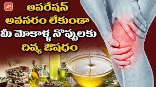 మోకాళ్ళ నొప్పులకు దివ్య ఔషదం Treatment for Knee Pain - Non Surgical Treatment for Knee Pain | YOYOTV