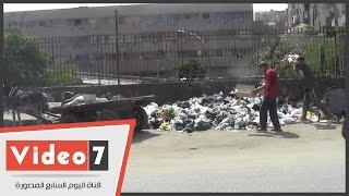 بالفيديو.. أكوام «القمامة» تحاصر معهد «تيودور بلهارس» للأبحاث فى الوراق