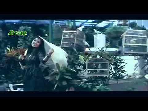 Aashiqui Mein Har Aashiq - Dil Ka Kya Kasoor (1992) Special...