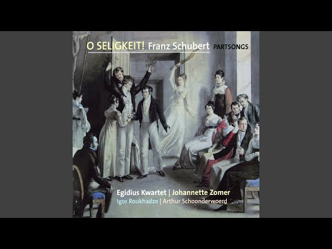 Шуберт Франц - Schicksalslenker, blicke nieder, Op. 141