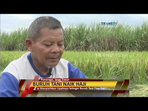 Harga info haji kabupaten subang