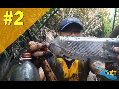Bí quyết đặt bẫy bắt cá thòi lòi bằng chai nước ngọt rất bá đạo
