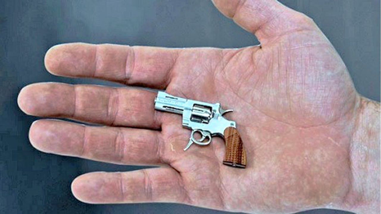 Biggest pistol in the world