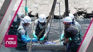 Sông Tô Lịch bớt hôi sau 3 ngày làm sạch | VTC Now