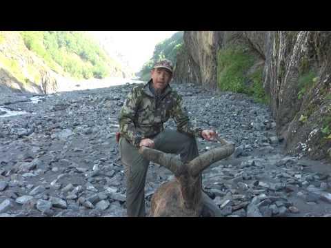 Dagestan Tur Hunting In Azerbaijan...Kenan...Facebook Page: Kenan Hunting
