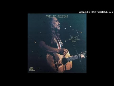 Willie Nelson - Ac Cent Tchu Ate The Positive