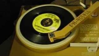 Count Five - Psychotic Reaction - 1965