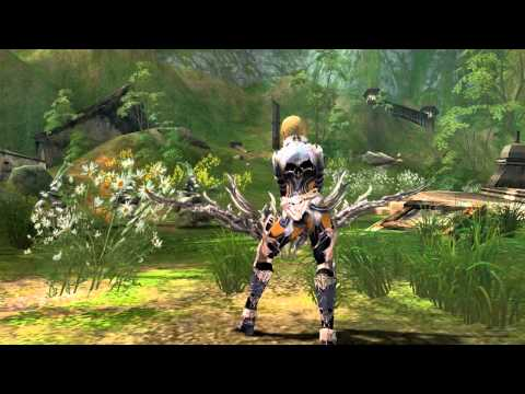 Lineage 2 Goddess of Destruction: Yr Archer