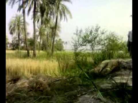 pakistan bannu jhandu khel visit