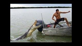 Fishing Fails Compilation
