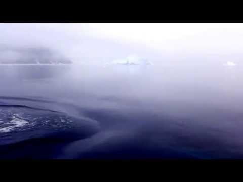 3x Minke Whales in Antarctica