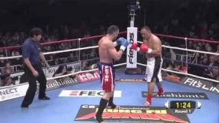 Peter Aerts vs Mighty Mo (K-1 World GP 2010)