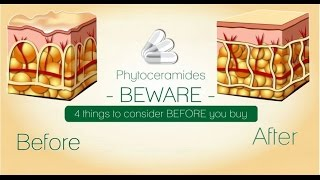 Phytoceramides BEWARE:4 things to consider before buying