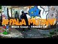 FALA MUTANT Black Coast TRNDSTTR Lucian Remix mp3
