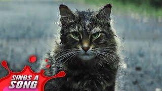 Pet Sematary Song (Stephen King Horror Film Parody SPOILERS)