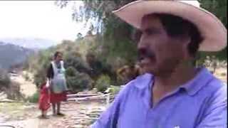 Apoya SAGARPA comunidades de Puebla con carencia alimentaria