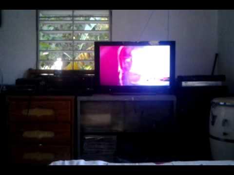 Cucala Fania All Star Celia Cruz Ismael Rivera video