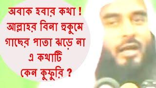 অবাক হবার কথা ! আল্লাহর বিনা হুকুমে গাছের পাতা ঝড়ে না এ কথাটি কেন কুফুরি ! Sheikh Motiur Rahman