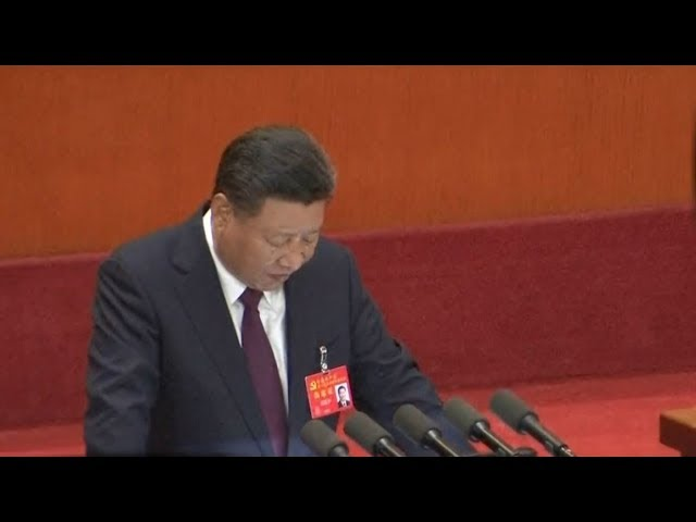 Xi Jinping accumulated 'enormous power' in Communist system – expert