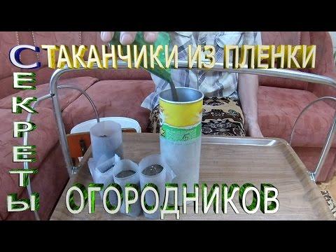 Изготовление стаканчиков для рассады своими руками