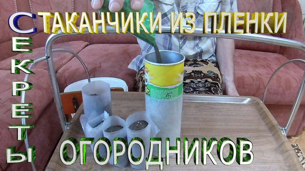 Для рассады как сделать стаканчики из пленки