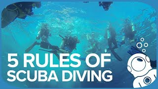 5 Rules Of Scuba Diving