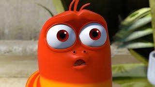 LARVA - DREAM LAND | Cartoon Movie | Cartoons For Children | Larva Cartoon | LARVA Official