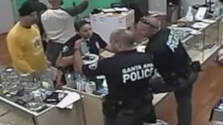 Police Raid Marijuana Shop, Then Eat Merchandise [VIDEO]
