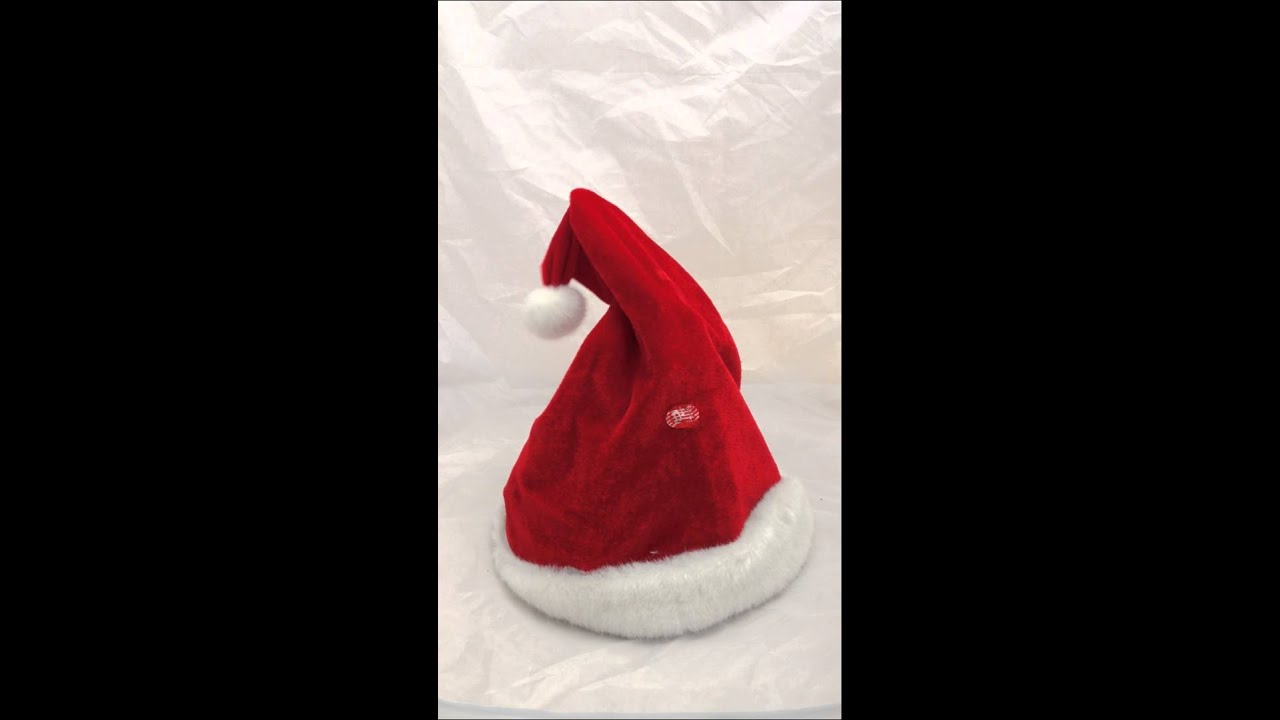 Animals in christmas hats images
