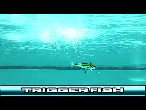 Techniques for Triggerfish. the steerable lure.