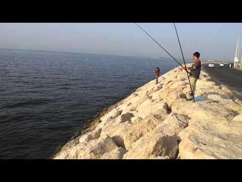 Fishing in Dammam corniche