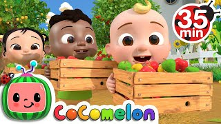 Learn to Cot with Apples + More Nursery Rhymes & Kids Songs - CoComelon