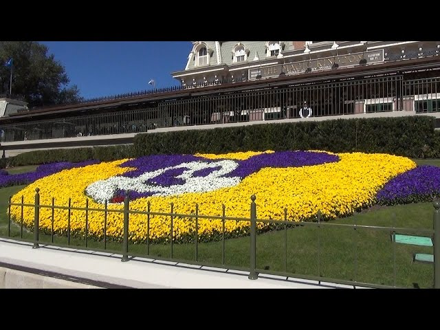 Magic Kingdom Mickey Mouse Floral at Railroad Station with New Fence, Walt Disney World