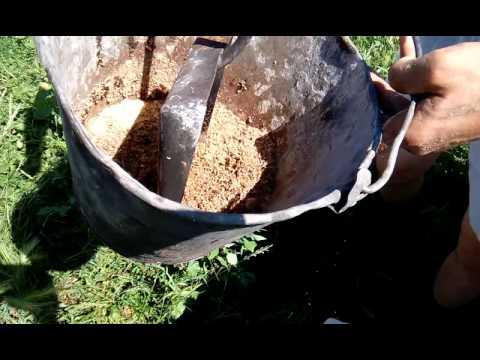 выращивание опарышей для рыбалки в домашних условиях